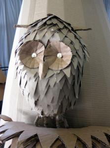 CW_owl